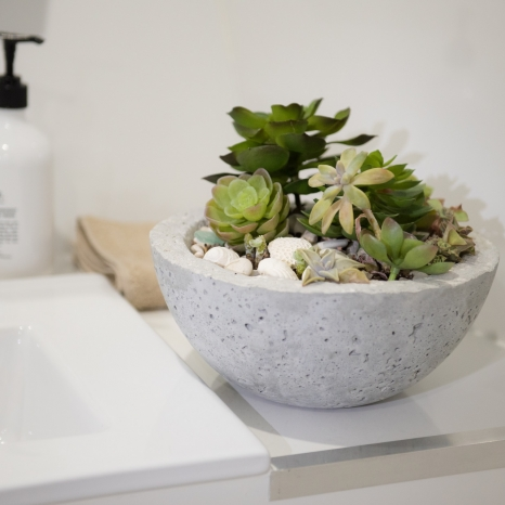 succulent planter in bathroom aboard kimberley pearl
